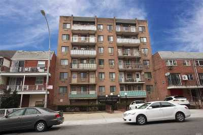 Flushing Condo/Townhouse For Sale: 144-23 Barclay Ave #6 A