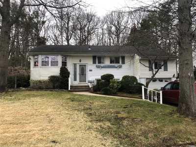 Farmingdale Single Family Home For Sale: 48 Jerome Dr