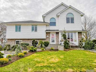 Plainview Single Family Home For Sale: 17 Roxbury Ave