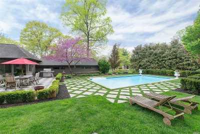 Dix Hills Single Family Home For Sale: 527 Deer Park Rd