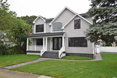 East Meadow Single Family Home For Sale: 386 Chambers Ave