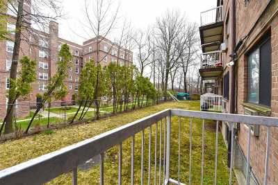 Jamaica Estates Condo/Townhouse For Sale: 172-73a Higland Ave #1F
