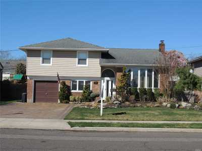 Wantagh Single Family Home For Sale: 1506 Holiday Park Dr