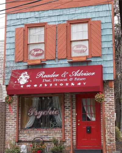 Nassau County Commercial For Sale: 133 Main St