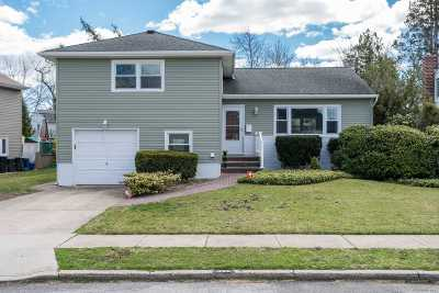 East Meadow Single Family Home For Sale: 398 Garden St