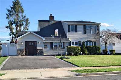 Wantagh Single Family Home For Sale: 93 N Duckpond Dr