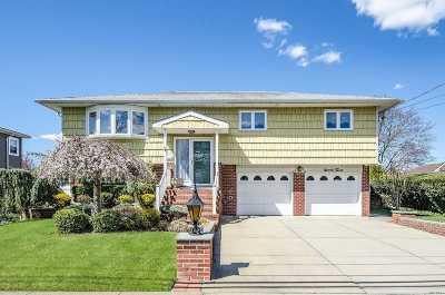 Farmingdale Single Family Home For Sale: 93 Michel Ave