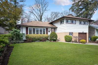East Meadow Single Family Home For Sale: 672 Richmond Rd