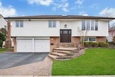 Jericho Single Family Home For Sale: 111 Wayne St