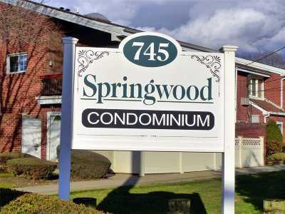 Nassau County Condo/Townhouse For Sale: 745 Conklin St #14