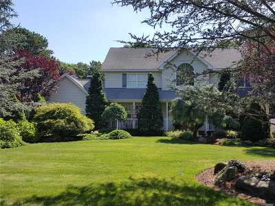 Brookhaven Single Family Home For Sale: 21 Deer Meadow Run