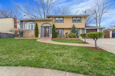 Baldwin Single Family Home For Sale: 1240 Lynne St