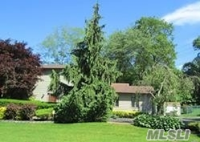 Dix Hills Single Family Home For Sale: 4 Justin Ave