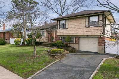 Farmingdale Single Family Home For Sale: 32 Damin Dr