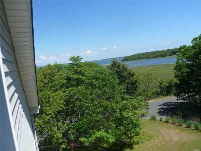 Hampton Bays Single Family Home For Sale: 19 Petrel Ln