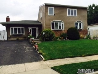 Farmingdale Single Family Home For Sale: 29 4th Ave