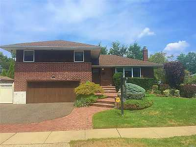 Plainview Single Family Home For Sale: 15 Avery Ln