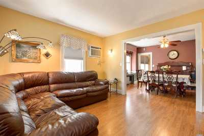 Floral Park Single Family Home For Sale: 20 Irving Ave