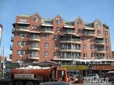 Flushing Condo/Townhouse For Sale: 41-05 College Point Blvd #7 FL