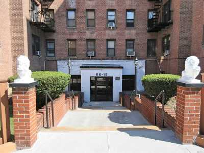 Rego Park Co-op For Sale: 66-15 Wetherole #E2
