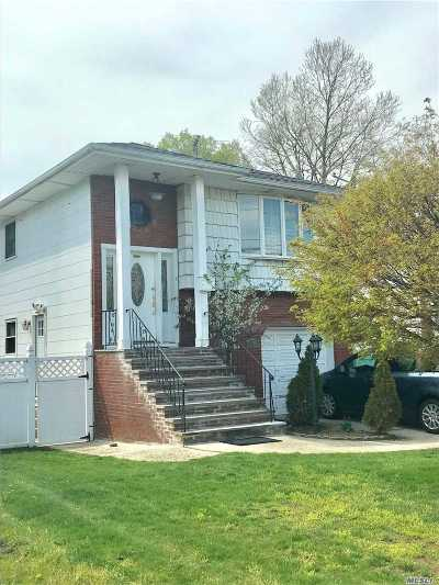 Valley Stream Single Family Home For Sale: 996 N Fletcher Ave Ave