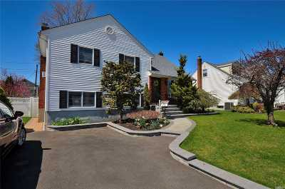 Bethpage Single Family Home For Sale: 28 Spencer Dr
