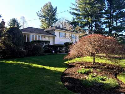 Greenlawn Single Family Home For Sale: 78 Lake Rd