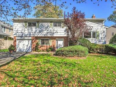 Jericho Single Family Home For Sale: 24 E Fern