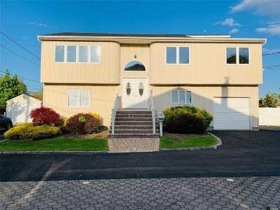 Massapequa Single Family Home For Sale: 4460 Merrick Rd