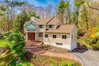 Old Westbury Single Family Home For Sale: 38 Valley Rd