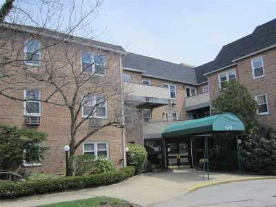 Lynbrook Condo/Townhouse For Sale: 570 Broadway #17A