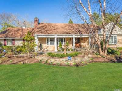Dix Hills Single Family Home For Sale: 28 Thorngrove Ln
