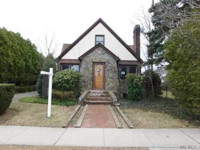 Hicksville Single Family Home For Sale: 28 Chestnut St