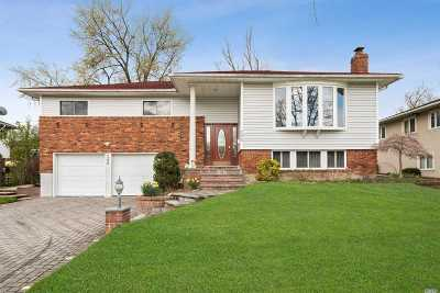 Manhasset Hills Single Family Home For Sale: 295 Continential Dr