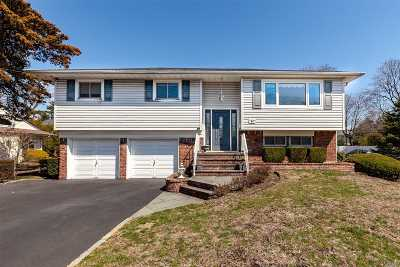 Hicksville Single Family Home For Sale: 64 New South Rd