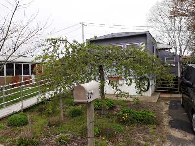 Holbrook Single Family Home For Sale: 95 Lincoln Ave