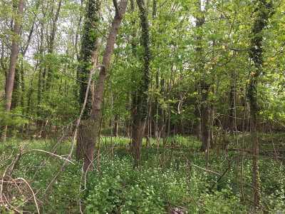 Setauket Residential Lots & Land For Sale: 94 Old Post Rd