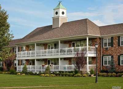 Hewlett Rental For Rent: 67 Prospect Ave #12W