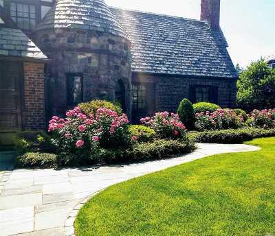 Rockville Centre Single Family Home For Sale: 31 Devon Rd