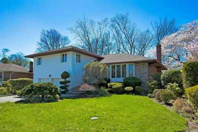 Plainview Single Family Home For Sale: 19 Roxton Rd