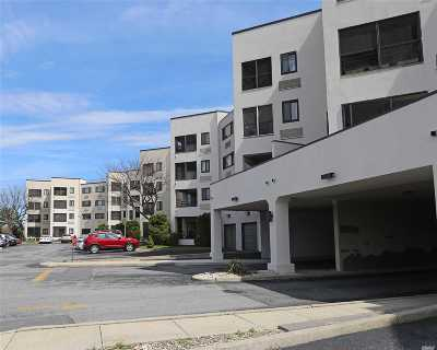 Nassau County Condo/Townhouse For Sale: 725 Miller Ave #441