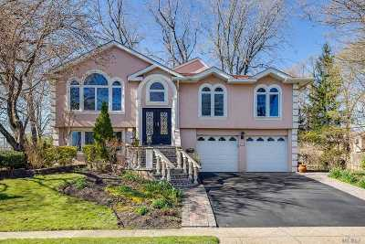 Syosset Single Family Home For Sale: 18 Lenore St