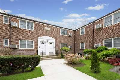 Little Neck Co-op For Sale: 251-46 61st Ave #Lower