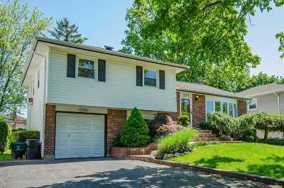 Wantagh Single Family Home For Sale: 1357 Holiday Park Dr