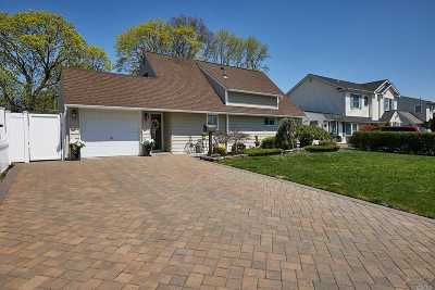 Wantagh Single Family Home For Sale: 25 Downhill Ln