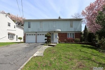 Nassau County Single Family Home For Sale: 74 Lee Ave