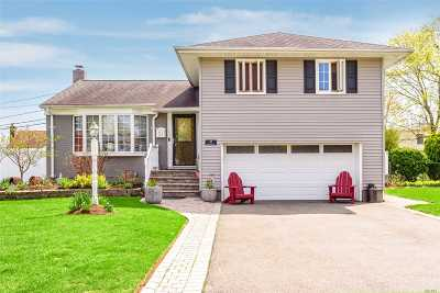 Plainview Single Family Home For Sale: 53 Blanche St