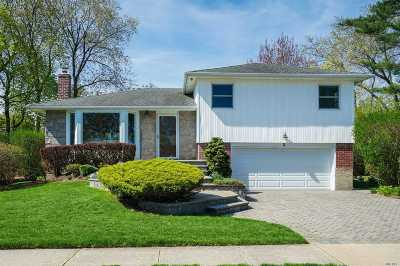 Plainview Single Family Home For Sale: 3 Vista Rd