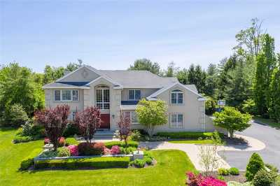 Woodbury Single Family Home For Sale: 3 Woodbury Farms Dr