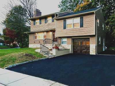 Plainview Single Family Home For Sale: 4 Garnet Ln